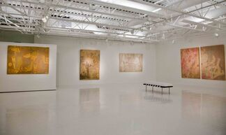 Cursive Script, Color, and Collage: The Art of Wei Jia, installation view