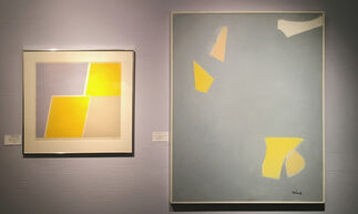 VISUALLY SPEAKING: COLOR & LIGHT, installation view