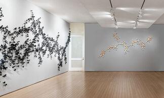 BRADLEY SABIN, installation view