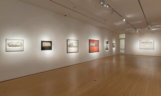 The Surge, installation view