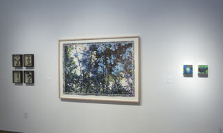 Summer Gardens: Representational and Abstract, installation view