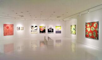 "İnci Ertuğ ""Motions"", installation view"