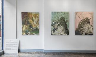 Chen Li: Spirit of Landscape, installation view