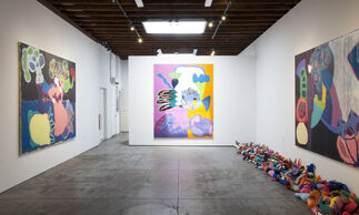 Maria Lynch: Spectacles and Spaces, installation view