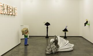 Cover Up, installation view