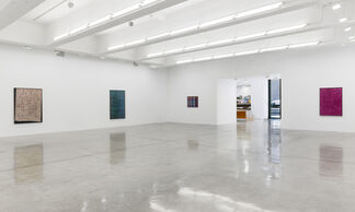 Lisa Oppenheim: A Durable Web, installation view