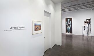 Meet Me Halfway: Selections from the Anita Reiner Collection, installation view