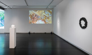 Plane of Scattered Pasts, installation view