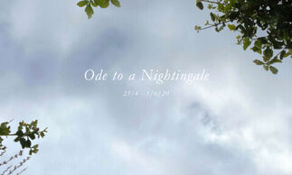 'Ode to a Nightingale', installation view