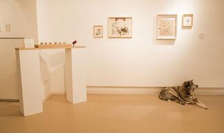 """""""Erasures"""", installation view"""