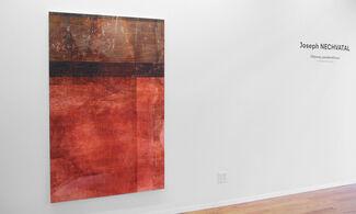 Joseph Nechvatal: Odyssey pandemOnium : a migrational metaphor, installation view
