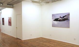 Beyond Gravity, installation view