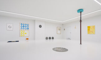 Holes, Bumps, Discs and Knots, installation view