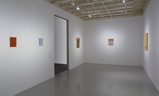 """Michelle Rawlings """"Impressionist Paintings"""", installation view"""