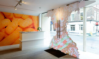 Window Project: Wotsit All About, installation view