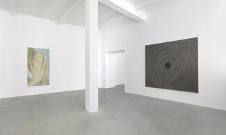 Y. Z. Kami, installation view
