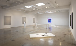 Extracting / Abstracting, installation view