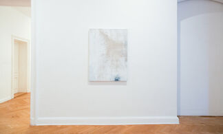 the windward side of the island, installation view