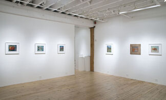 America-ecstatic: Aaron Holz, installation view