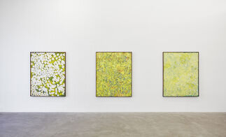 Matthew Chambers: Montana Wildflowers I Imagine I'll See in the Spring, installation view