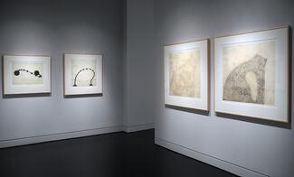Martin Puryear: Recent Prints, installation view