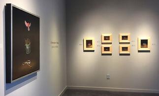 Christopher Clamp: Stories In Stillness, installation view