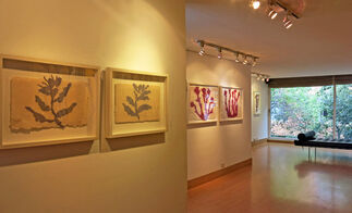 Offerings, Recent Works by Luz Helena Caballero, installation view