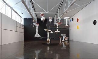 Carsten Höller: Reason, installation view