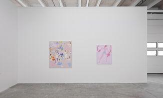 Charlie Roberts – JUICY XXL, installation view