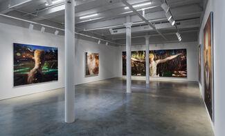 Jérôme Lagarrigue: Visible Man, installation view