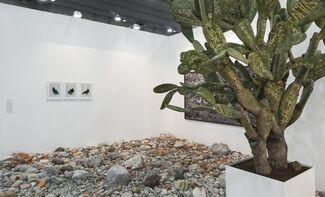 DITTRICH & SCHLECHTRIEM at Zona MACO 2015, installation view