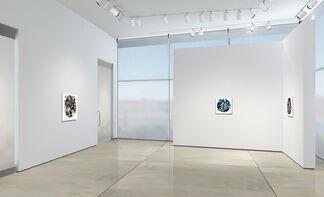 PETER GERAKARIS: MASQUERADE, installation view