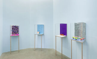 Dianna Molzan: Limoz, installation view