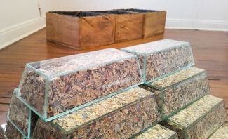 Ley de Paramos by  Santiago Velez. ArtBo Fin de Semana.  In collaboration with Beta gallery, installation view
