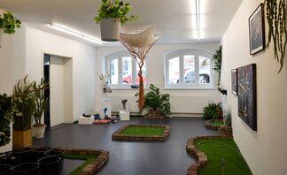 The Best Bogus Botanical Garden, installation view