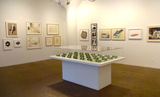 New Prints 2013/ Autumn, installation view