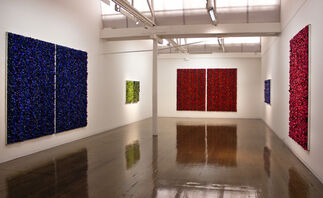 Blue on Blue, installation view