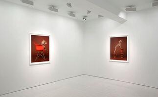 William Wegman, installation view