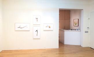 David Morrison: Sticks, installation view