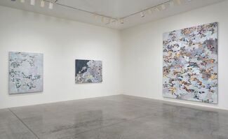Tony Berlant: Close to Home, installation view