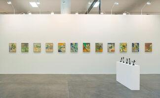 Stephen Friedman Gallery at SP-Arte 2017, installation view