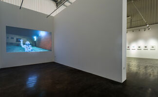 So long, and Thanks for all the Fish, installation view