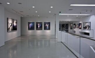 Araki: A Perspective, installation view