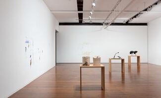 Hany Armanious, installation view
