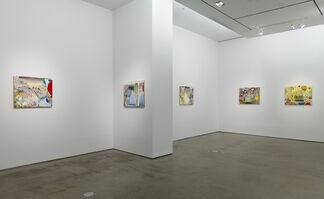 Carolyn Case: Heat and Dust, installation view