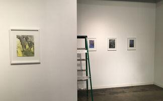 Harumi Shimazu, Linde Pieper, Seth Daulton, installation view