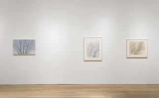 Sylvia Plimack Mangold: Summer and Winter, installation view