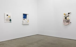 """Julie Schenkelberg; """"From the Ashes"""", installation view"""