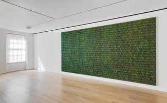 Carol Bove: The Plastic Unit, installation view