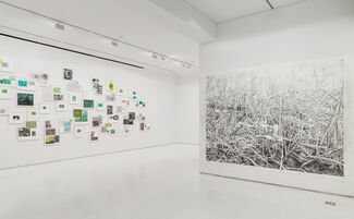 A Great Piece of Turf, installation view